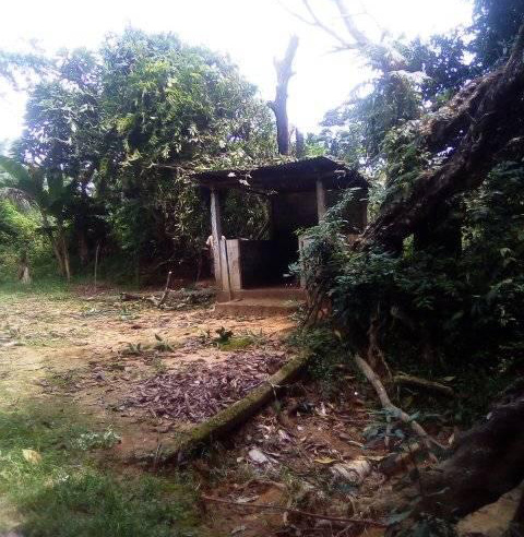 সিলেটের বনকলাপাড়ার রক্ষা কালী মন্দির পুন:নির্মাণ ও সংস্কারে সহযোগিতার আহ্বান